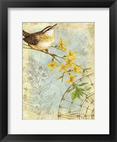 Framed Songbird Sketchbook I