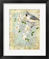 Songbird Sketchbook IV Framed Print