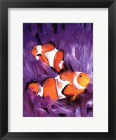 Framed Jeweled Fish I