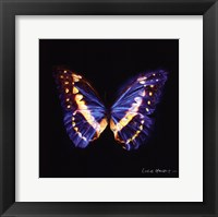 Framed Techno Butterfly II