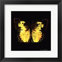 Framed Techno Butterfly I