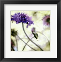 Summer Whimsy Framed Print