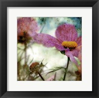 He Loves Me ... Framed Print