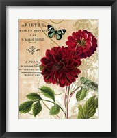 Framed Red Dahlias