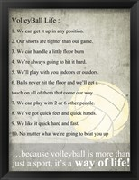 Framed Volleyball Life