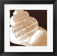 Natural Shell III - mini Framed Print