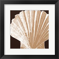 Natural Shell IV - mini Framed Print