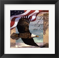 Framed Freedom I
