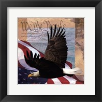 Freedom II Framed Print