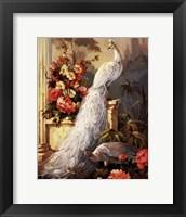 Framed Peacocks, Column