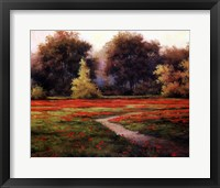 Framed Autumn Poppies I