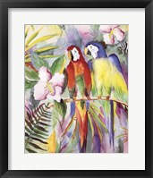 Framed Parrots On A Branch