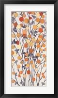Framed Mandarins III