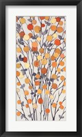 Mandarins III Framed Print