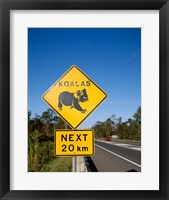 Framed Koala sign on the road, Queensland, Australia