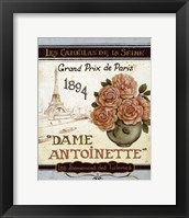 Framed French Seed Packet II