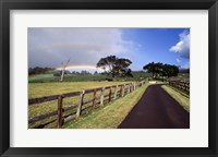 Framed Rainbow over pineapple fields, Makawao, Maui, Hawaii, USA