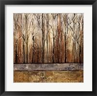 Telluride I Framed Print