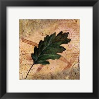 Framed Antiqued Leaves II