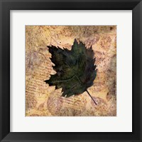 Framed Antiqued Leaves III