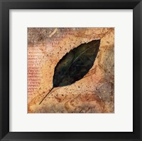 Framed Antiqued Leaves IV