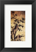 Xia Chang-Bamboo and Stone Framed Print