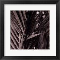 Bamboo Study I Framed Print