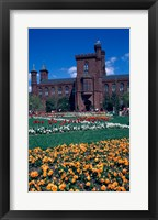 Framed Formal garden in front of a museum, Smithsonian Institution, Washington DC, USA