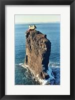 Framed Labrador helicopter landing Bell Island