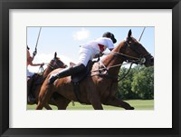 Framed Polo nearside swing