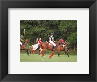 Framed Polo Umpire