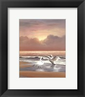 Framed Ocean Sunset