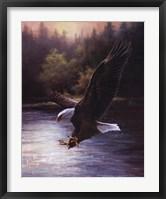 Framed Eagle Prey