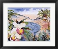 Framed Hawaiian Orchids