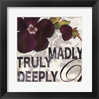 Madly Framed Print