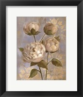 Peony on Soft Blue Framed Print