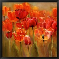Framed Tulips in the Midst III
