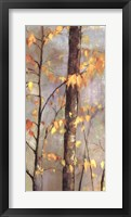 Golden Branches II Framed Print