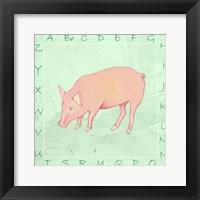 Pig Alphabet Framed Print