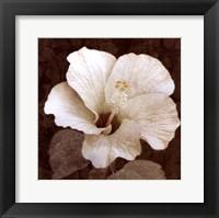 Framed Verdant Blossom