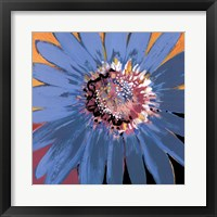 Sunshine Flower II Framed Print