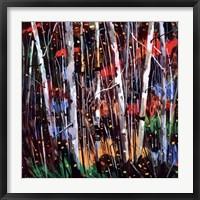 Framed Autumn Fireworks