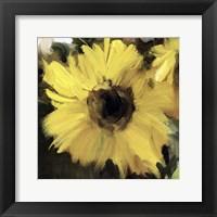 Framed Sunflower Square I