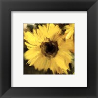 Framed Sunflowers Square I