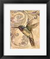 Framed Hummingbrid II