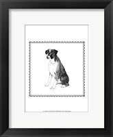 Framed Best in Show XI