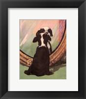 Framed Terrier Trouble IV