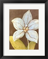 Orchid & Earth II Framed Print