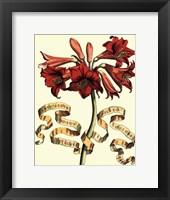Ribbon Florals II Framed Print