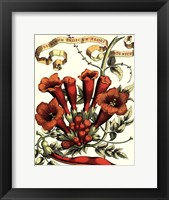 Ribbon Florals IV Framed Print